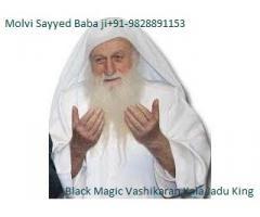 online solution tantra manra  specialist molv ji+91-9828891153